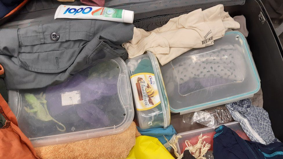 Image shows the suitcase shortly after discovery