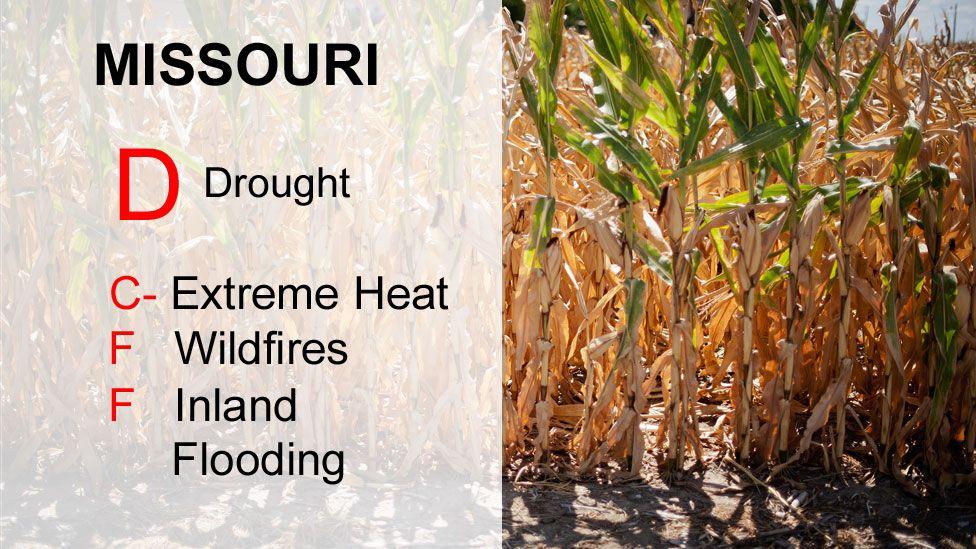 Missouri scores D Drought, C-Extreme heat, F Wildfires, F Inland Flooding