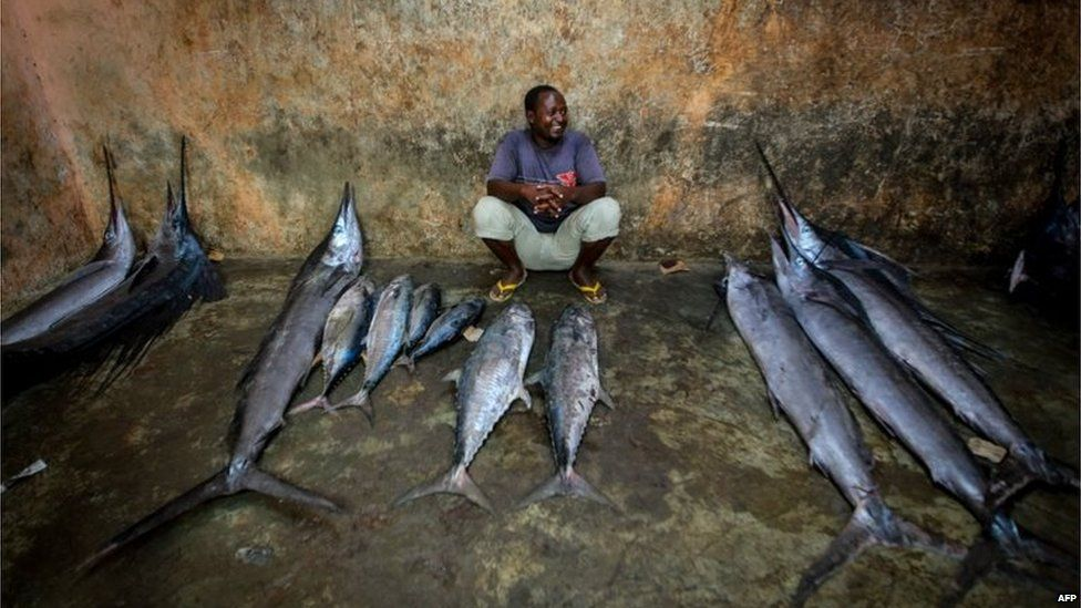 A handout photograph taken taken on March 16, 2013 and released on March 18 by the African Union-United Nations Information Support Team showsa a trader waiting to sell fish inside the fish market in the Xamar Weyne district of Mogadishu.
