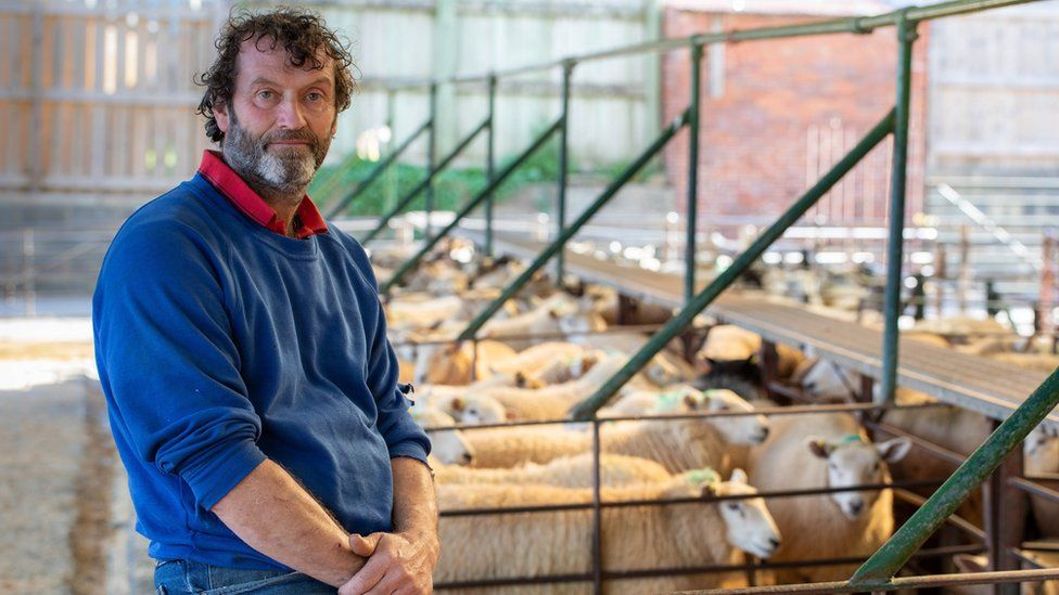 Sheep farmer Jeff Gwillim pictured with some of his flock at the family farm near Talgarth