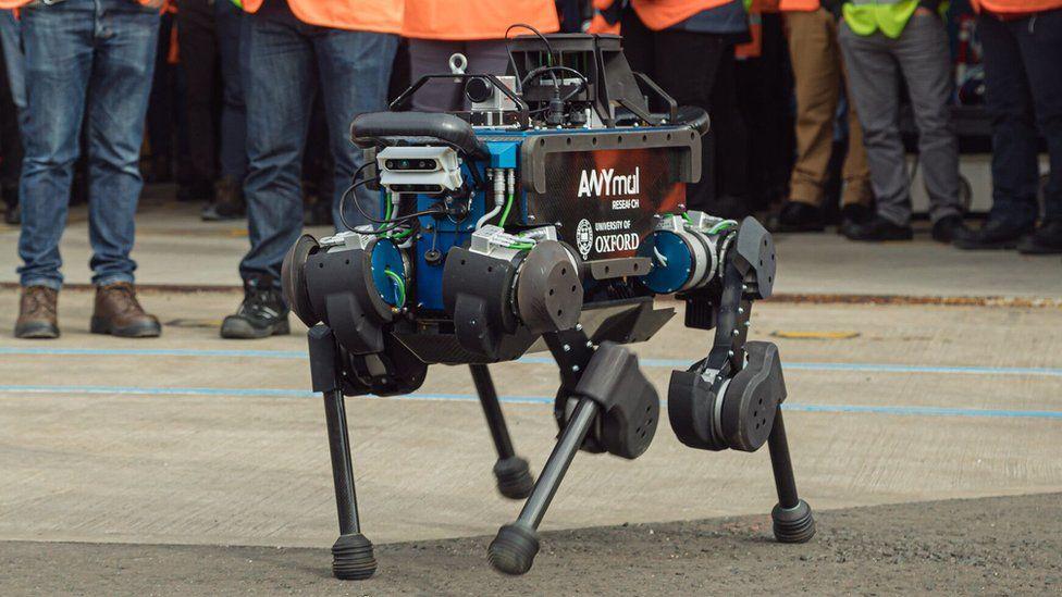 ANYmal robot