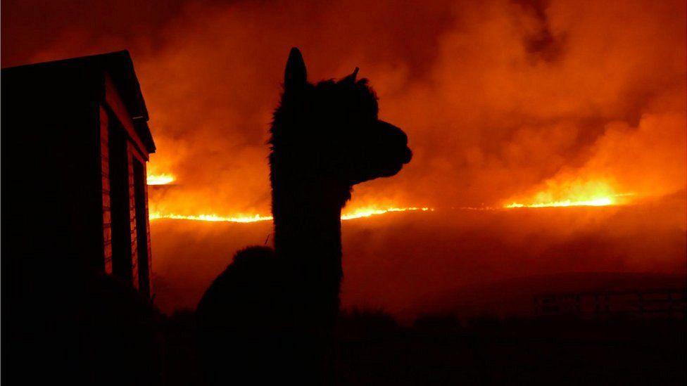 Marsden fire
