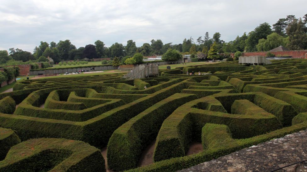The hedge maze at Blenheim Palace