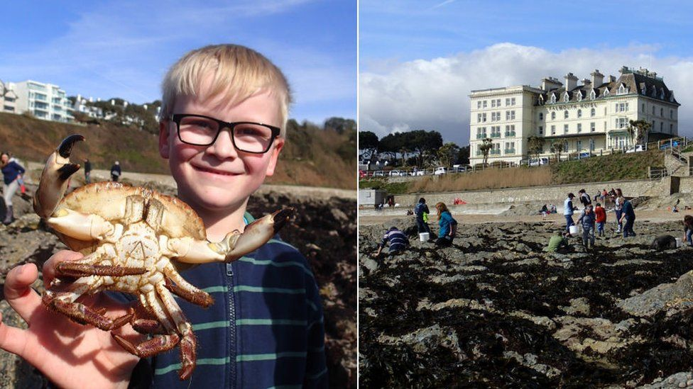 Boy with crab, rockpool survey in Falmouth