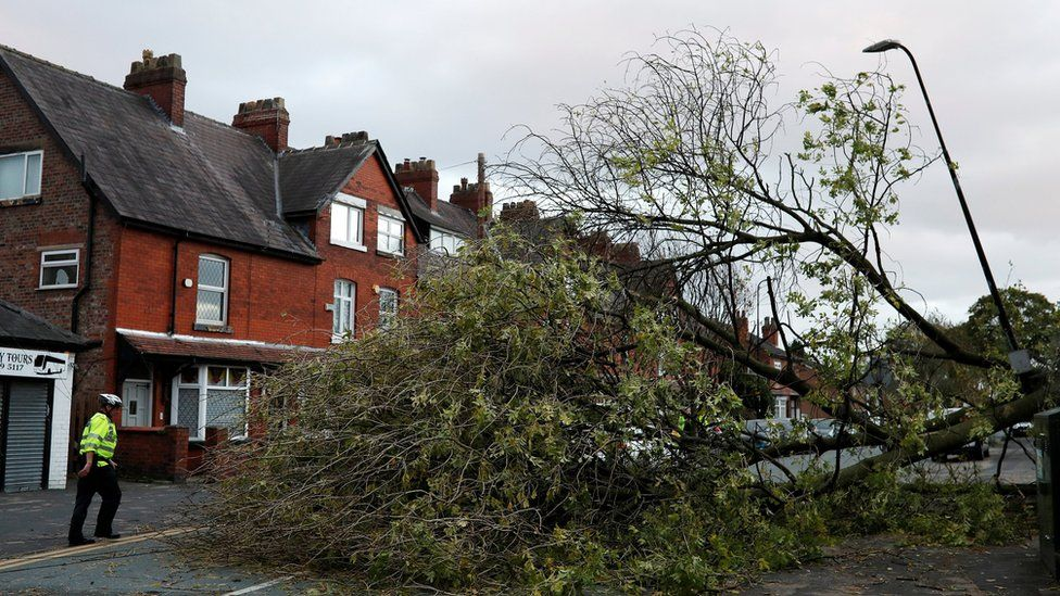 A police officer next to a tree in Sale, Greater Manchester