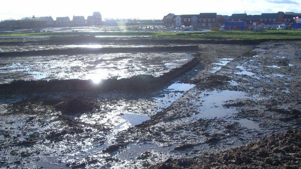 Berryfields before excavation
