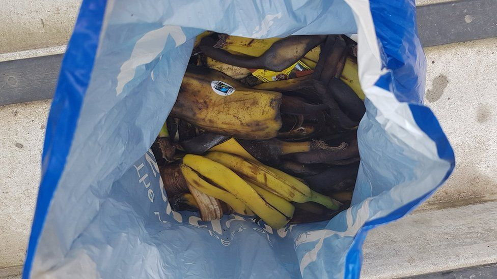 Banana skins collected from Ben Nevis