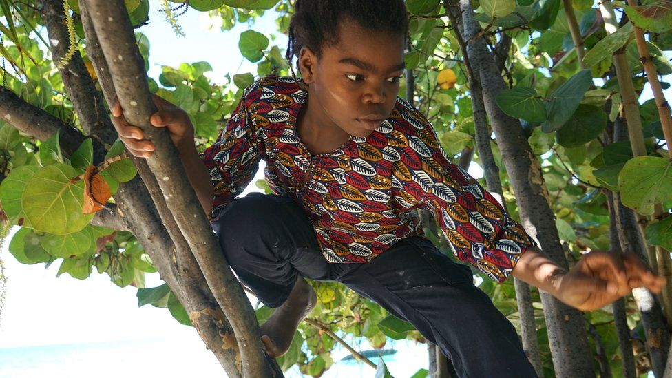 Yashua Mack playing in a seagrape tree