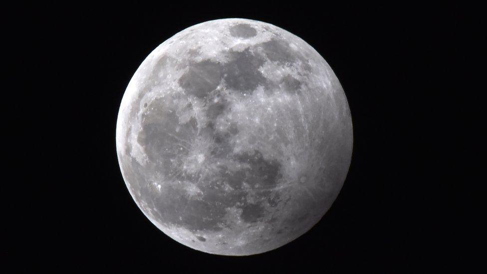 Wolf moon in Skopje