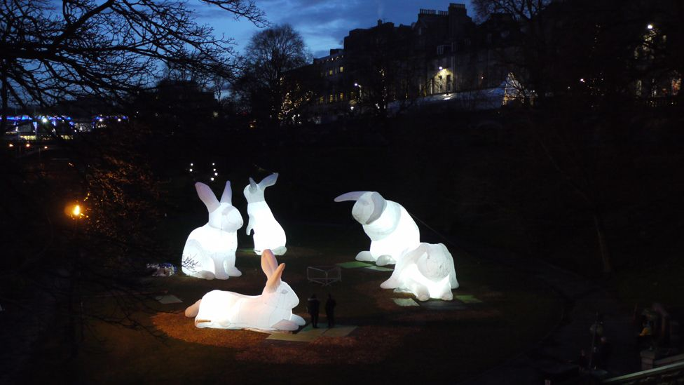 Giant illuminated rabbits