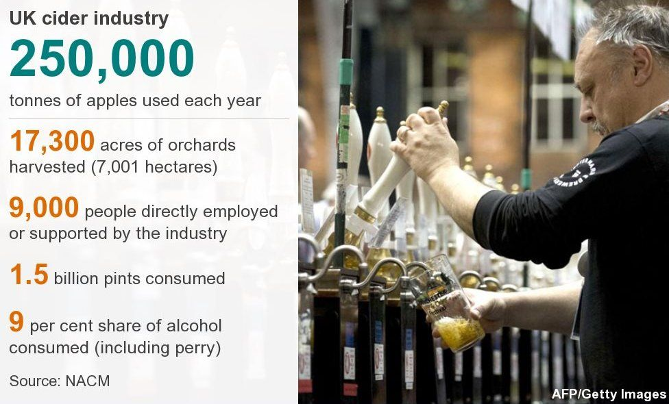 Cider industry infographic