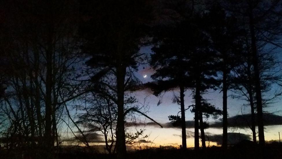 Sunset over Larbert