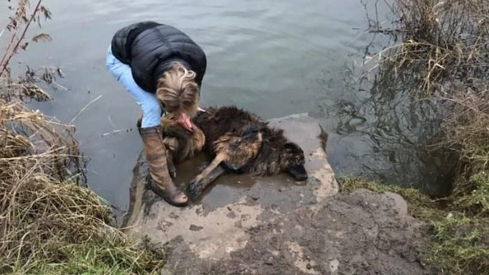 Jane Harper rescuing dog Bella