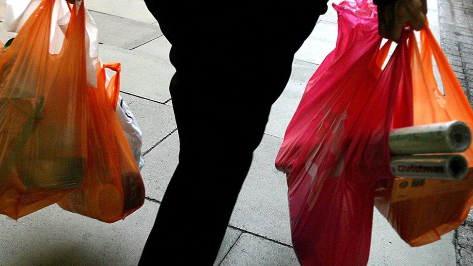 Shopper holding two plastic bags