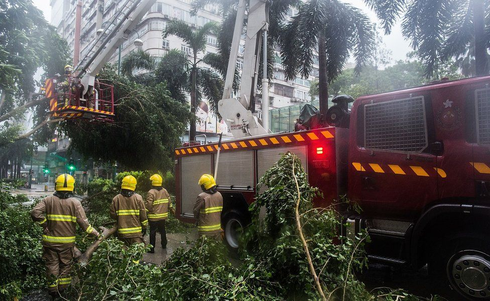 Fire fighters remove fallen trees in Hong Kong on 2 August 2016.