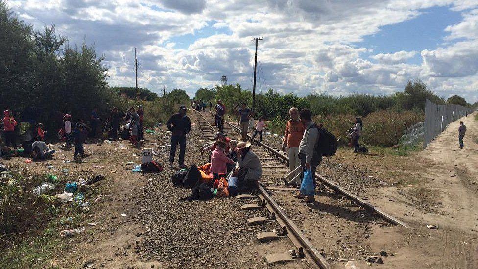 Migrants on Hungarian-Serbian border. 7 Sept 2015