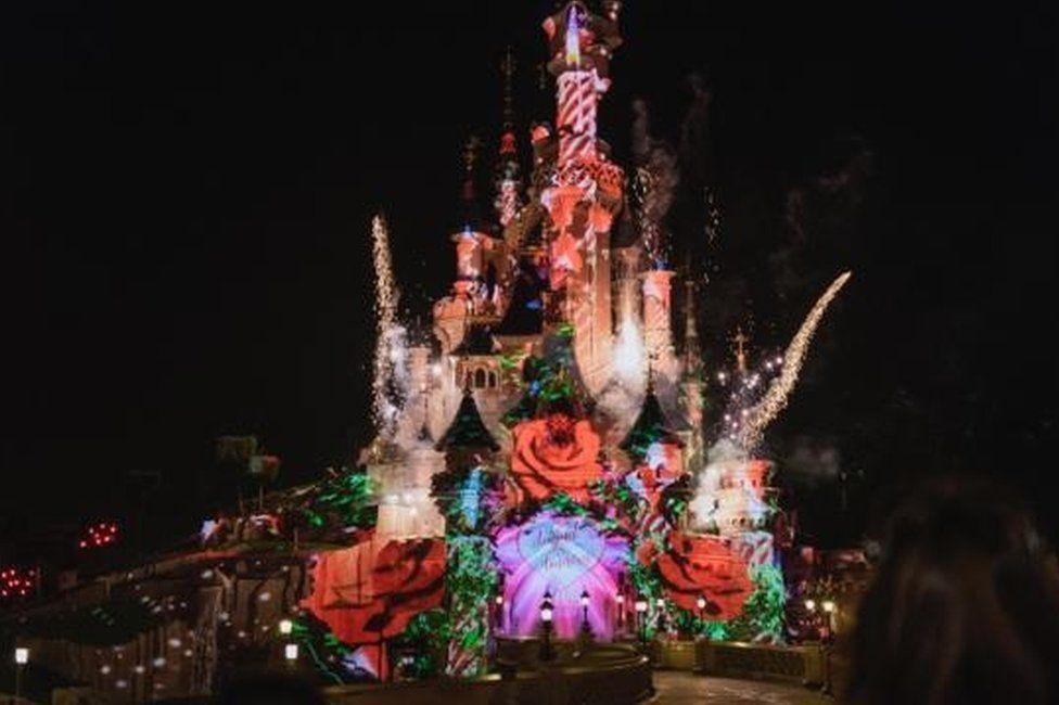 Proposal in Disneyland Paris