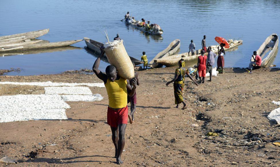 Porter taking cassava to market
