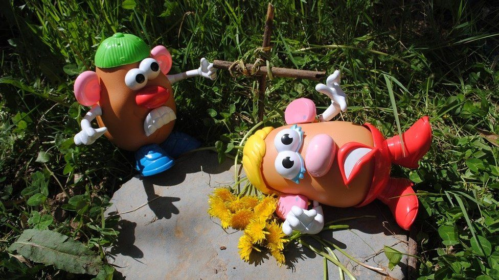 Mr and Mrs Potato Head as Romeo and Juliet