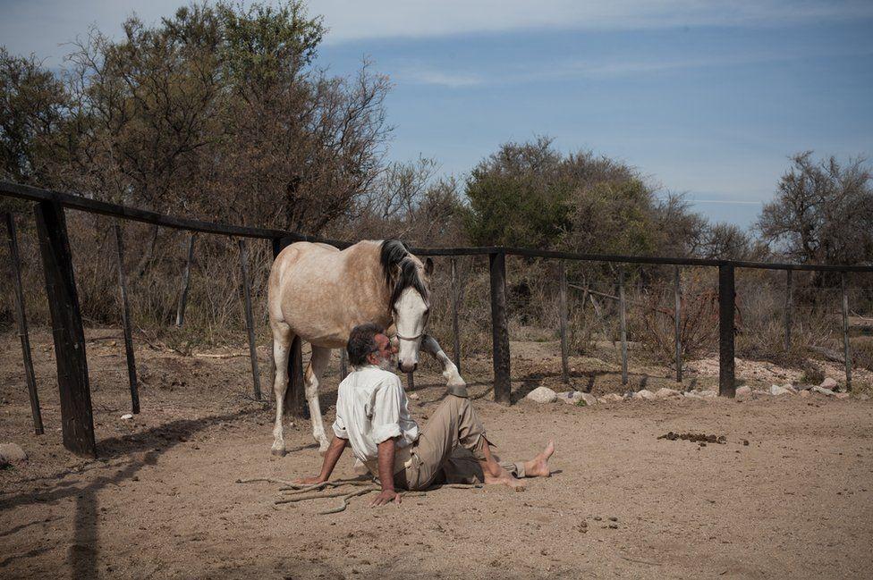 Oscar in the farmyard with a wild foal