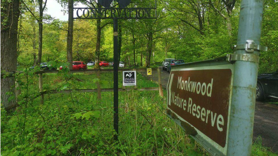 Monkwood nature reserve