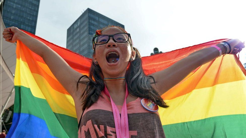 """A supporter attends the annual """"Pink Dot"""" event in a public show of support for the LGBT community at Hong Lim Park in Singapore"""