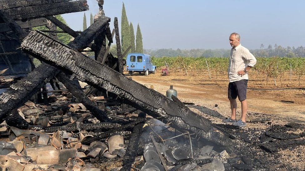 Wildfires: Provence wine producers assess impact of destruction