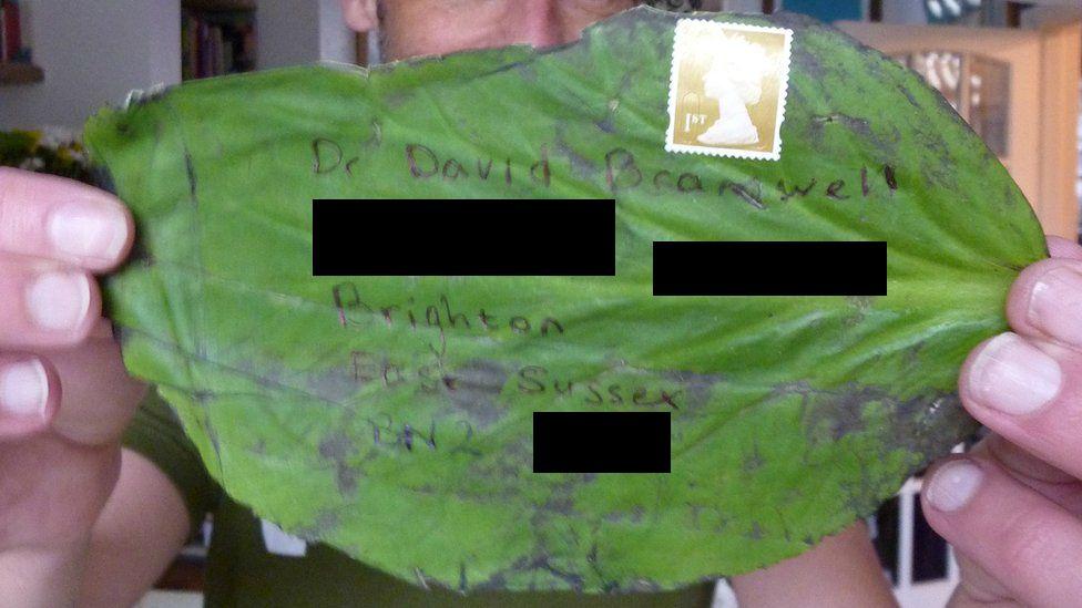 Posted leaf