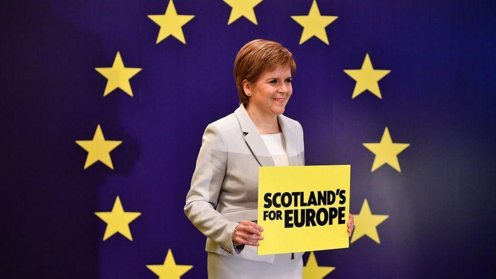 Sturgeon European flag