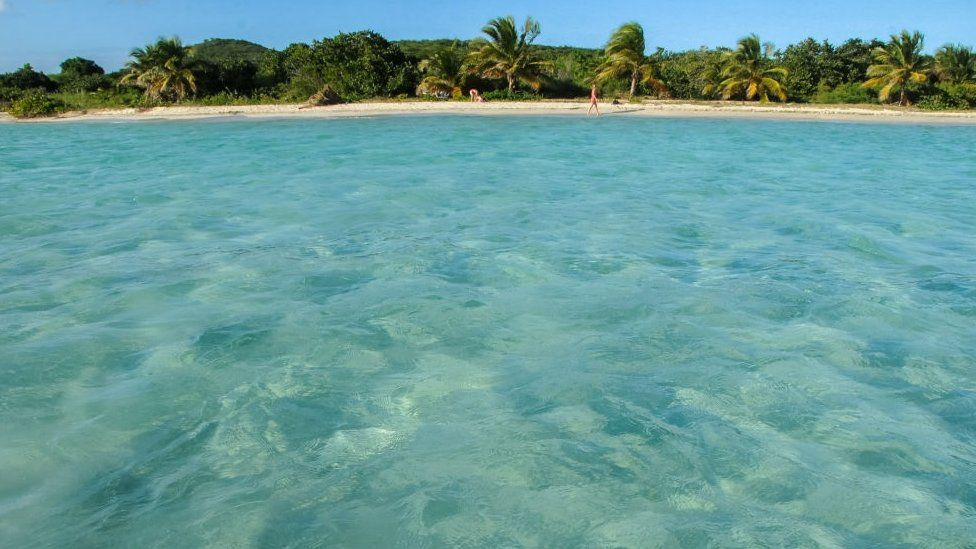 Clear Caribbean water on the white sand beaches of Vieques, Puerto Rico