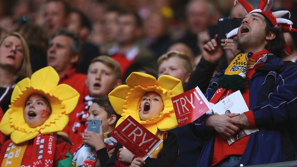 Welsh rugby fans