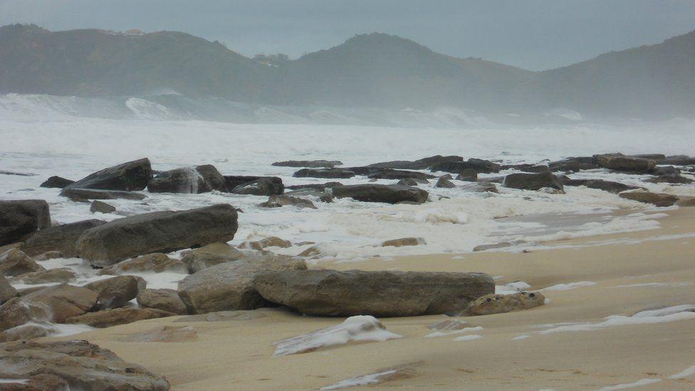 O que são as rochas de Charles Darwin, que opõem ambientalistas e projeto de porto no RJ
