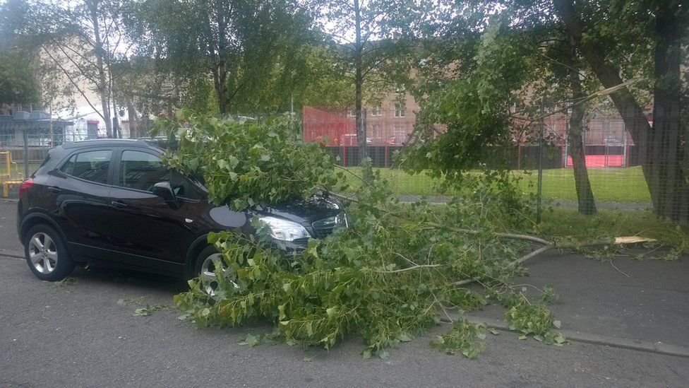 Tree blown on top of car in Dennistoun in Glasgow