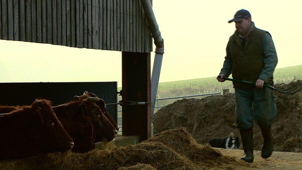 Farmer John Matheson