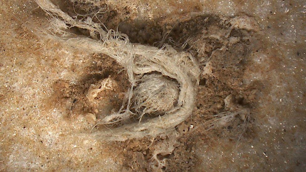 Handout photo issued by M-H Moncel/Histoire Naturelle de l'Homme Préhistorique showing a cord fragment discovered at the Abri du Maras archaeological site in France
