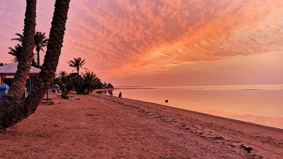 Umluj beach at sunset with pink sky and palm trees