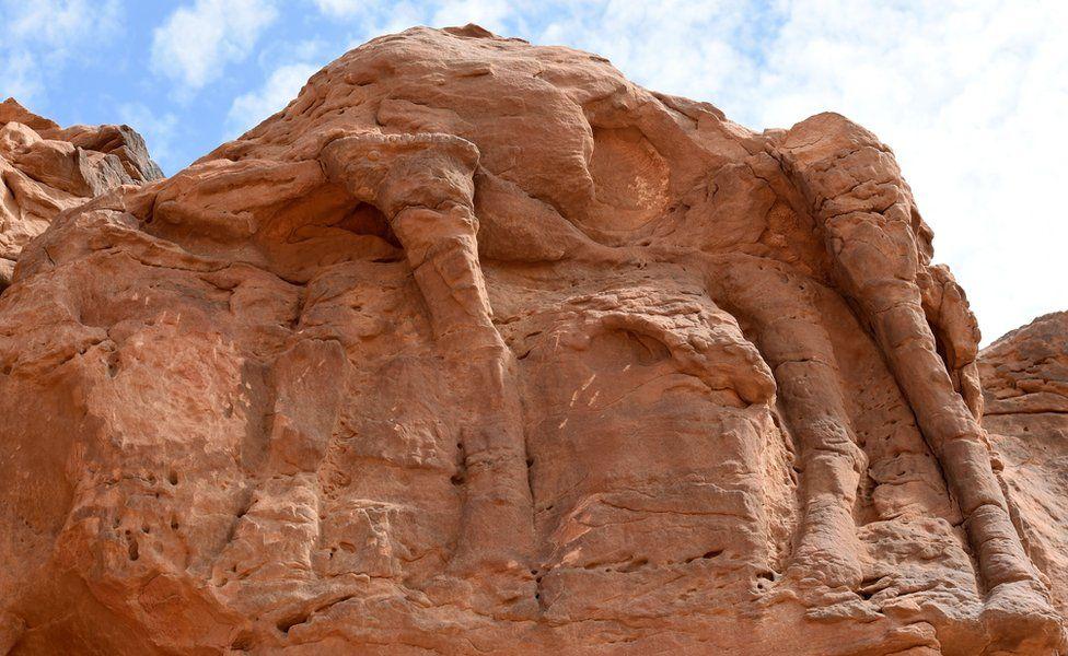 Saudi Arabia camel carvings dated to prehistoric era thumbnail