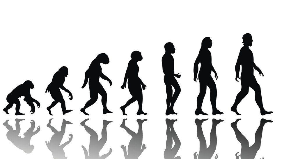Cómo evolucionaremos los humanos en los próximos 200 años (la potencialmente aterradora visión de Yuval Harari)