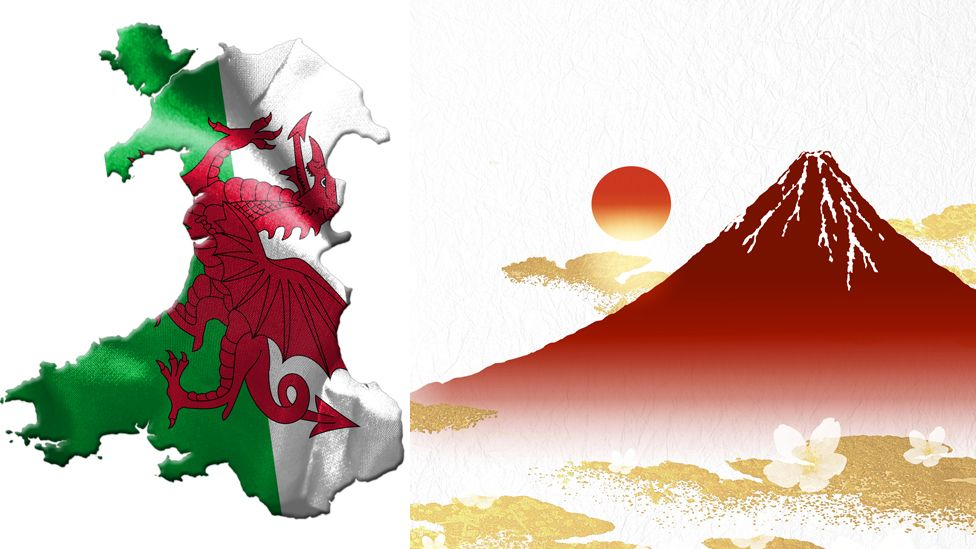 Wales Japan graphic