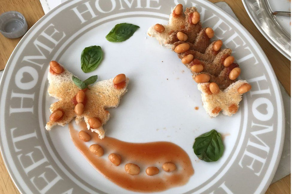 Ashleigh Gahagan's butterfly bean creation