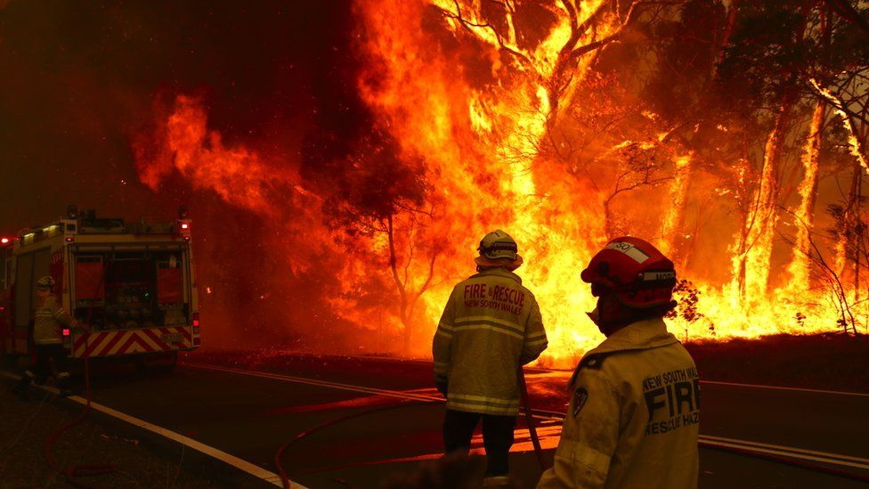 Image result for AUSTRALIA WILDFIRES THOUSANDS FLEE TO THE SEA AS FIRES RACE TO COAST