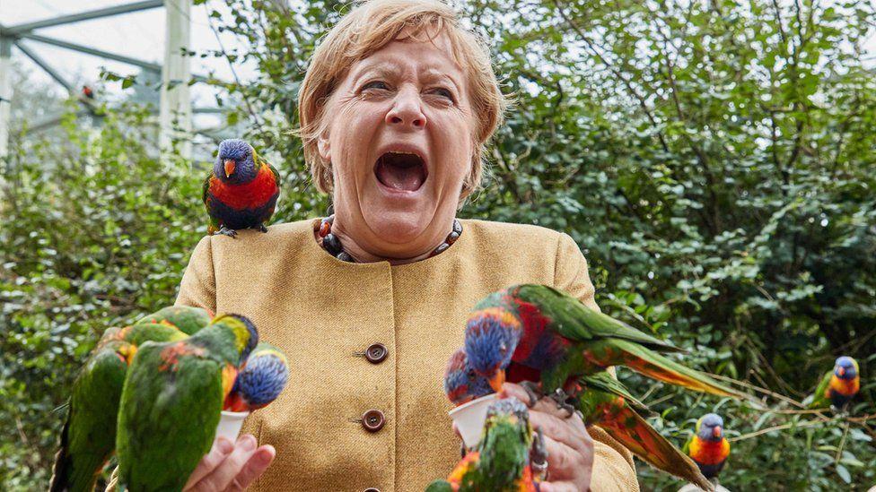 Ангела Меркель (ХДС), канцлер Германии, кормит австралийских лори в парке птиц Марлоу и ее укусили, 23 сентября 2021 года, Мекленбург-Передняя Померания, Марлоу