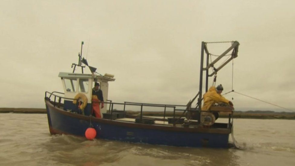 Colchester Oyster Fishery boat laying shells