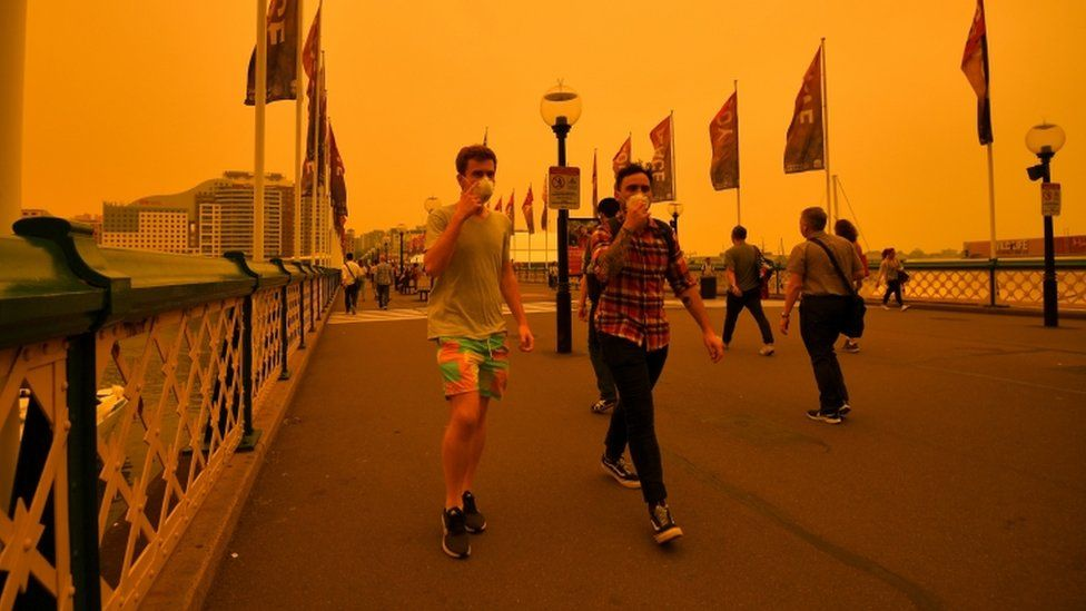 A smoky haze has enveloped much of Sydney