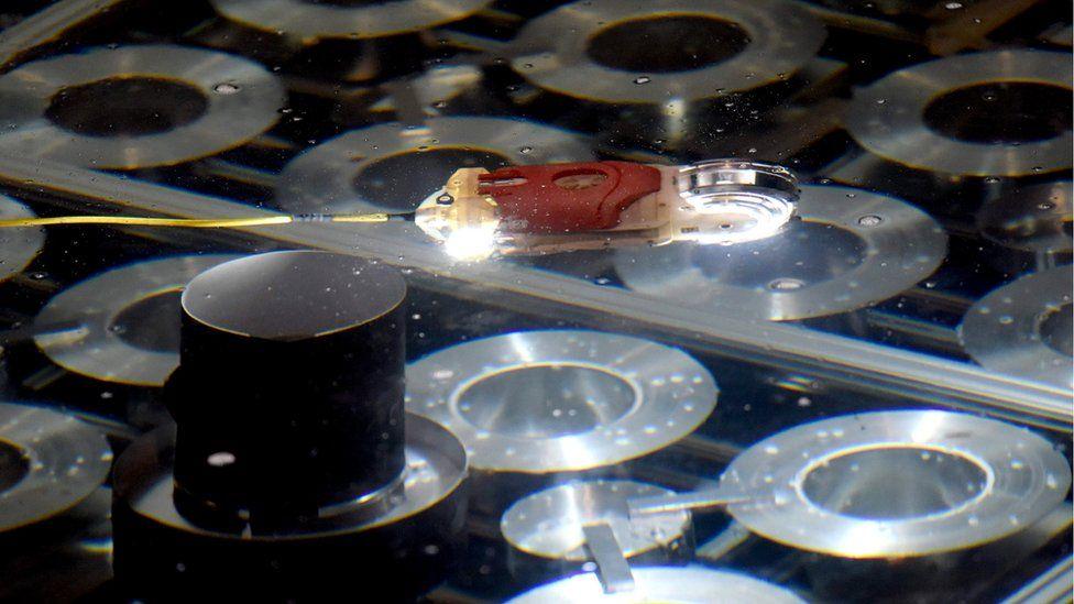Toshiba's swimming robot