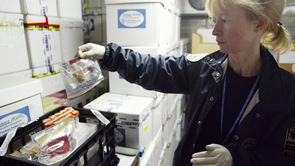 Mechthild 'Maggie' Prinz, Assistant Director of Forensic Biology for the Chief Medical Examiner of New York City, works in a giant cooler that stores unidentified human remains at the city morgue August 26, 2003