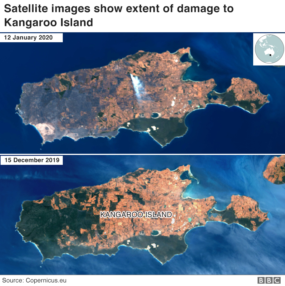 Satellite image showing fire destruction on Kangaroo Island