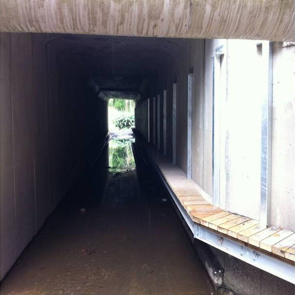 One of the water culverts retrofitted with bridges to allow animals safe passage beneath a busy road