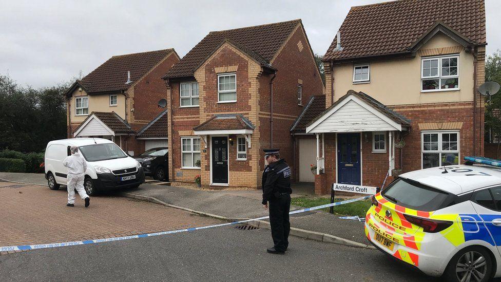 Milton Keynes stabbings: Murder arrest over boys' deaths