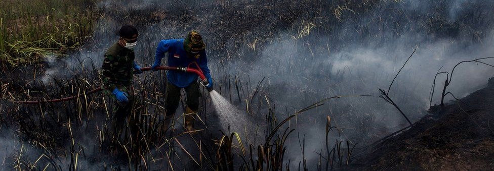 Indonesian soldiers extinguish the fire on burned peatland and fields at Sungai Rambutan village, Ogan Ilir district on 2 October 2015 in Palembang, South Sumatra, Indonesia
